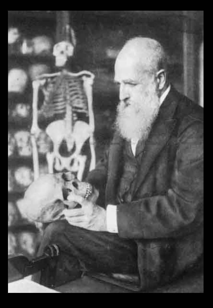 Felix von Luschan (1854-1924), Leiter der Abteilung Afrika und Ozeanien im Königl. Museum für Völkerkunde